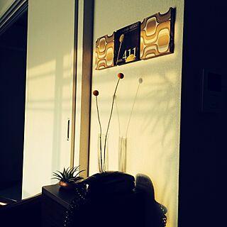 棚/西日の射す部屋/ファブリックボードもどきのインテリア実例 - 2014-06-20 22:08:36