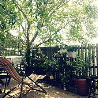 女性家族暮らし4LDK、夏の庭に関するkotoriccoさんの実例写真
