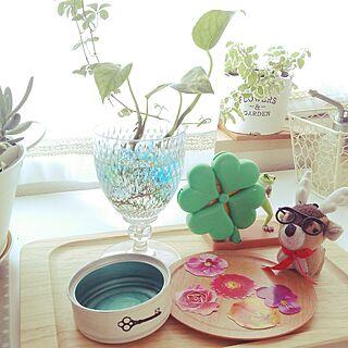 ベッド周り/すてきすぎ便/花が好き/植物/花のある暮らし...などのインテリア実例 - 2017-05-29 15:52:02