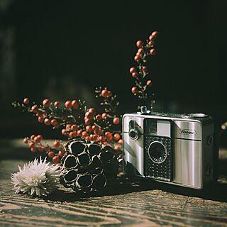 机/ハッセルブラッド/クラシックカメラ/植物/カメラ...などのインテリア実例 - 2015-02-23 22:03:18
