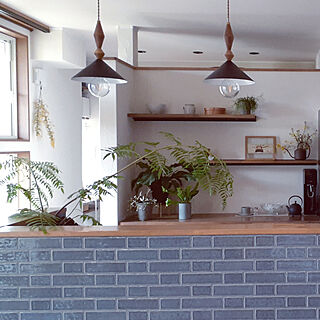 キッチン/キッチン/庭の花/壁の後ろはパントリー/珪藻土の壁...などのインテリア実例 - 2020-04-22 09:32:56