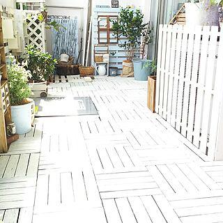 DIY棚の人気の写真(RoomNo.2823560)