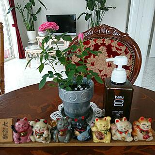 女性57歳の、My Shelf 猫雑貨に関するmachikomamaさんの実例写真