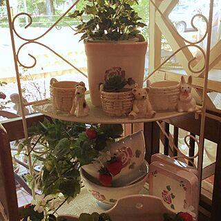 玄関/入り口/プランター/薔薇雑貨/花のある生活/ローズ柄...などのインテリア実例 - 2016-05-22 12:02:04
