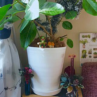 女性56歳の家族暮らし3LDK、お花のある暮らしに関するfuuさんの実例写真