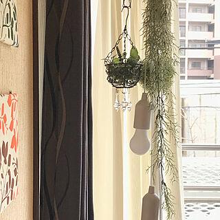 リビング/セリア雑貨リメイク/フェイクグリーン♡/窓ぎわ♪/みなさんの素敵なインテリアに癒されてます...などのインテリア実例 - 2018-01-17 12:12:26