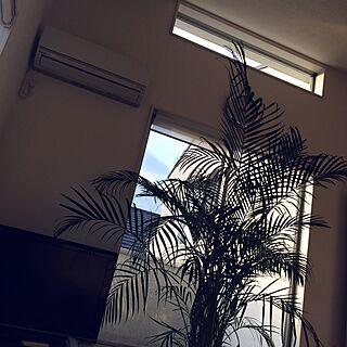 リゾートな空間の人気の写真(RoomNo.2141882)