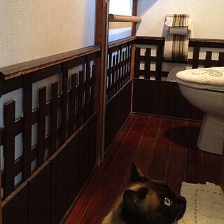 バス/トイレ/DIY/壁/トイレのインテリア実例 - 2013-03-08 18:59:28