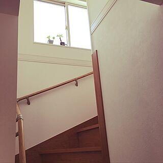 リビング/リビング階段♡/観葉植物/おきにいり♡/ダイソーの観葉植物...などのインテリア実例 - 2017-07-20 15:29:33
