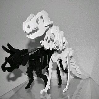 棚/100均/セリア/モノクロ/恐竜のインテリア実例 - 2014-02-21 20:47:55