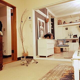 リビング/ひとり暮らし/元和室/猫のいる生活/本棚...などのインテリア実例 - 2018-09-05 22:55:15