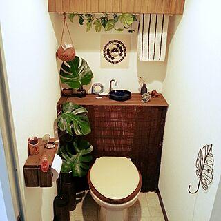 バス/トイレ/DIY/手作り/観葉植物/セリア...などのインテリア実例 - 2014-04-19 14:06:26