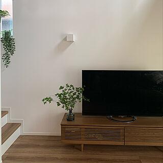 グリーンのある暮らし/IKEAフラワーベース/テレビボード/ドウダンツツジデビュー/ドウダンツツジのある暮らし...などのインテリア実例 - 2021-06-11 20:14:49