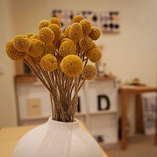 部屋全体/yellow/vase/雑貨のインテリア実例 - 2016-09-27 20:34:20