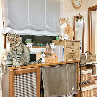 女性家族暮らし3LDK、裁縫箱に関するcocomaroさんの実例写真