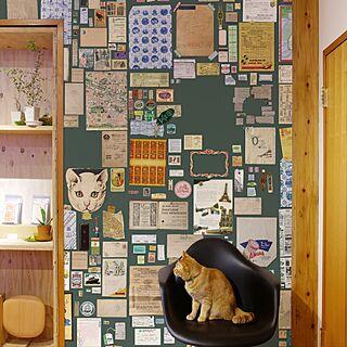 壁/天井/NO CAT,NO LIFE❤️/レシート/切手/封筒...などのインテリア実例 - 2017-05-07 11:27:24