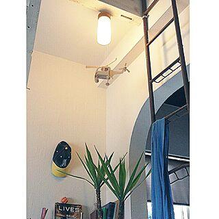 壁/天井/釣糸/green/植物/照明/漆喰壁...などのインテリア実例 - 2014-07-22 20:12:54