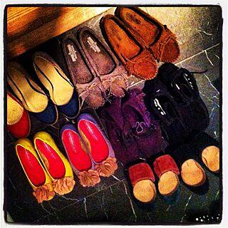 玄関/入り口/お気に入りの靴/浪費家の証のインテリア実例 - 2012-05-27 01:18:39