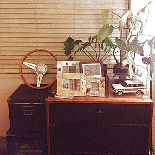 、観葉植物のある部屋に関するさんの実例写真