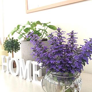女性家族暮らし4LDK、花のある暮らしに関するcherryさんの実例写真