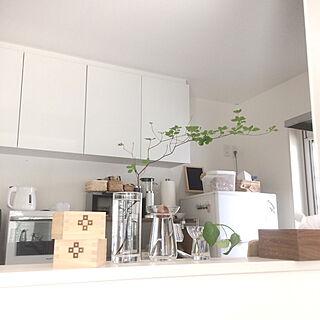 女性31歳の同棲2LDK、キッチン栽培に関するharu148cmさんの実例写真