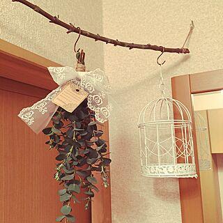、ユーカリの枝に関するさんの実例写真