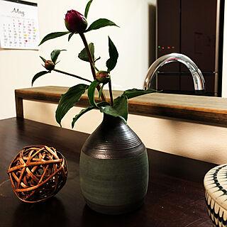 リビング/花器♡/手作り/季節の飾り/観葉植物...などのインテリア実例 - 2018-05-03 19:15:22