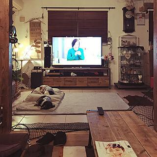 部屋全体/58型テレビ/ミニチュアダックスフント/IKEA/サボテン...などのインテリア実例 - 2018-04-14 21:50:07