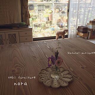 リビング/関家具/nora./ほっこり*/多肉植物...などのインテリア実例 - 2017-05-24 08:48:37
