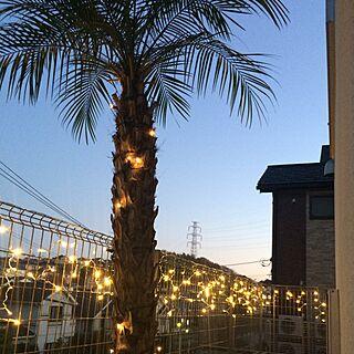 玄関/入り口/家の周り/観葉植物/リゾート系/クリスマス...などのインテリア実例 - 2016-12-11 21:55:14