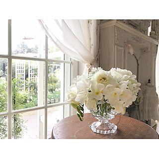 格子窓の人気の写真(RoomNo.2524987)