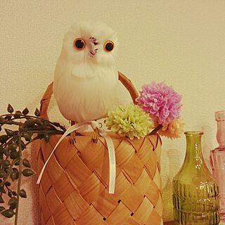 棚/雑貨屋さんで買ったもの♥︎/フクロウちゃんのインテリア実例 - 2014-03-14 20:12:15