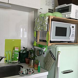 お気に入りのカラー/ニトリ/多肉植物/観葉植物/キッチンのインテリア実例 - 2021-07-02 12:18:53