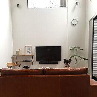 リビング/武蔵/いつもありがとうございます/犬と暮らす家/卒園式...などのインテリア実例 - 2018-03-22 12:51:54