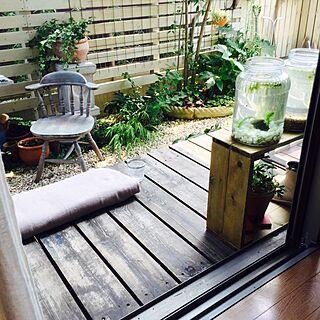 オールDIYの庭/板塀/メダカビオトープ/ジャンクガーデン/コンテスト参加中...などのインテリア実例 - 2015-07-26 13:57:23