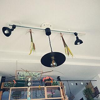 女性41歳の家族暮らし2LDK、LEDレトロ電球に関するporinさんの実例写真
