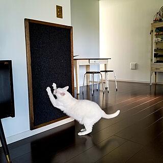 予防掃除/猫/壁付け爪とぎ/つめとぎ/タイルカーペット...などのインテリア実例 - 2019-10-07 08:32:36