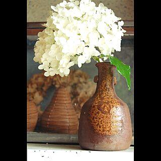 玄関/入り口/ナチュラル/あじさい/花/植物...などのインテリア実例 - 2016-06-29 12:39:39