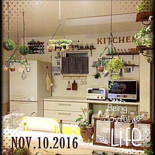 キッチン/アイアン棚/かべがみや本舗/DIY/つるすの大好き...などのインテリア実例 - 2016-11-10 01:09:13