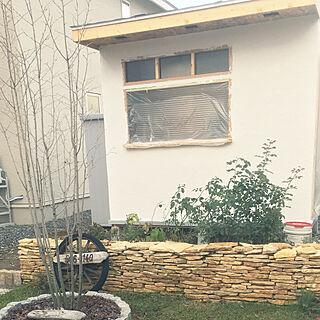 玄関/入り口/漆喰壁DIY/カフェ風/木が好き/ブルーベリー...などのインテリア実例 - 2017-10-27 12:58:29