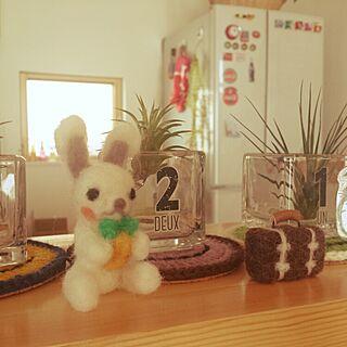 女性、羊毛ウサギに関するseiさんの実例写真