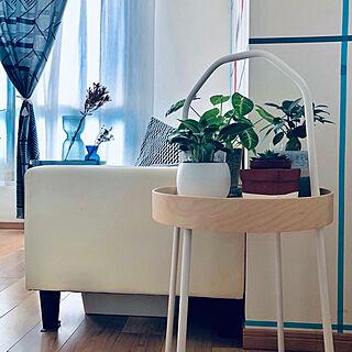 NO GREEN NO LIFE/サイドテーブル/IKEA/北欧/mapoesie...などのインテリア実例 - 2018-11-02 19:27:18