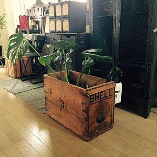 棚/journal standard Furniture/米軍フィールドデスク/木箱/アンティーク/ビンテージ...などのインテリア実例 - 2015-05-26 21:50:38