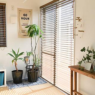 女性家族暮らし4LDK、鉢DIYに関するhiro.rororoさんの実例写真