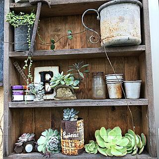 玄関/入り口/DIY/ガーデン雑貨/多肉植物寄せ植え/庭のある暮らし...などのインテリア実例 - 2017-12-21 20:36:20
