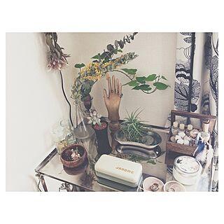 リビング/エアプランツ/ユーフォルビア/植物/ドライフラワー...などのインテリア実例 - 2014-03-25 00:01:29