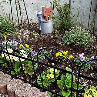 玄関/入り口/ガーデン雑貨/100均/花壇リニューアル中/ダイソーのインテリア実例 - 2021-05-25 17:00:49