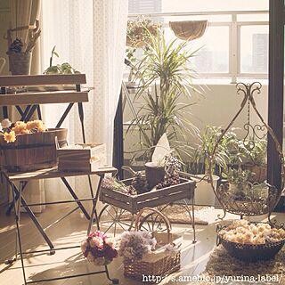 玄関/入り口/植物/フラワーカート/ベランダガーデン/アンティーク...などのインテリア実例 - 2014-01-20 20:22:31