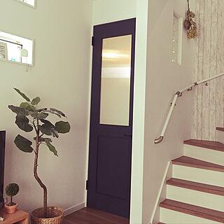 玄関/入り口/ネイビーの扉/階段/初投稿/観葉植物...などのインテリア実例 - 2017-11-30 12:20:39
