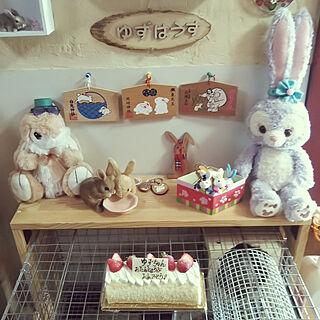 部屋全体/いいね!ありがとうございます♪/ペットと暮らす家/うさぎと暮らす/ウサギ...などのインテリア実例 - 2019-02-23 12:08:53